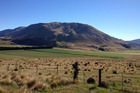 The Canterbury High Country has changed with much of the traditional camaraderie and goodwill no longer existent.