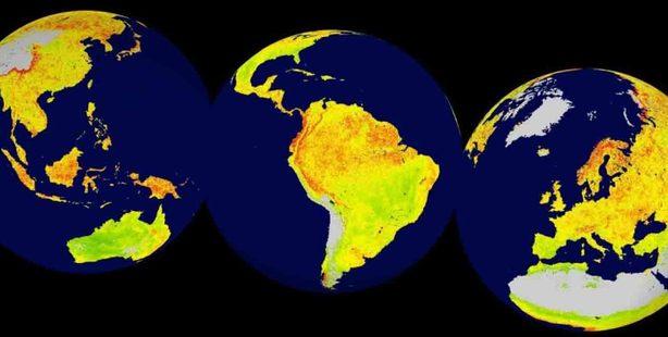 A global snapshot of the Vegetation Sensitivity Index (VSI), a new indicator of vegetation sensitivity to climate variability using satellite data between 2000-2013. Photo / Courtesy Seddon et al