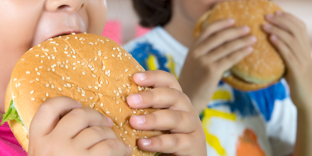 According to official statistics, one in three of all New Zealand children is overweight or obese. Photo / iStock