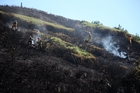 Fire crews said steep terrain made bringing this 20-hectare blaze under control challenging. Photo / Michael Cunningham