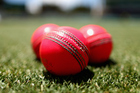 A new version of the pink ball will be trialled at Seddon Park in a day-night match next weekend. Photo/Getty.