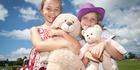 Teddy bears and picnics
