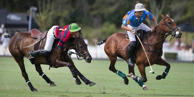 Edmundo Tigers polo rider Jauno Bestof, left, in action against the Tiger Building Dirk van Reenen during the final of the Veuve Cliquot Polo Open Clevedon. Photo / Brett Phibbs
