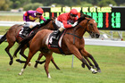 Vinnie Colgan aboard  Volkstok'n'barrell winning at Otaki yesterday. Photo / RACE IMAGES PNTH