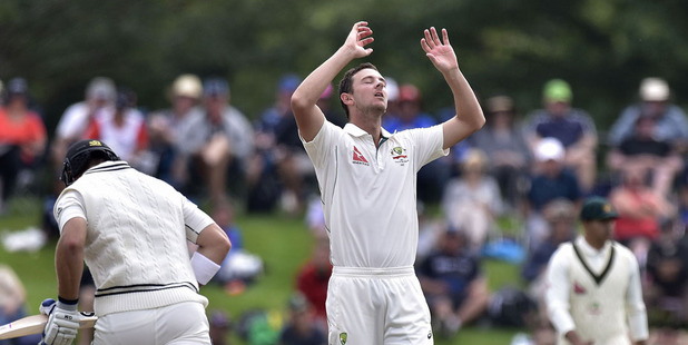 Josh Hazlewood reacts during day four of the second test. Photo / Getty