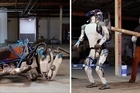 """Google-owned Boston Dynamics has revealed 'Atlas', a robot designed to operate outdoors and inside buildings. The robot has LIDAR and stereo sensors in its head to avoid obstacles, assess the terrain, help with navigation and manipulate objects. This version of Atlas is about 5' 9"""" tall and weighs 180 lbs."""