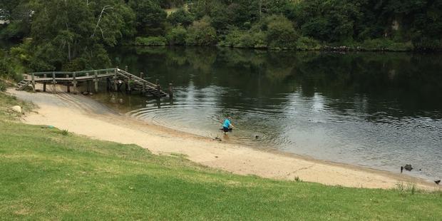 A Hamilton man was last seen at the Wellington St beach section of the Waikato River last night.