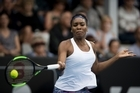 Venus Williams in action against Jade Lewis (NZL) during day two of the ASB Tennis Classic held at the ASB Tennis Centre. 03 January  2017 New Zealand Herald Photograph by Dean Purcell.