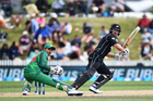 Selectors Mike Hesson and Gavin Larsen brought back 33-year-old Neil Broom and 36-year-old Jeetan Patel and the result paid dividends. Photosport