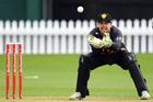 Wellington wicket keeper Tom Blundell. Photo / Photosport