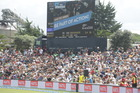 Big crowd at Black Caps cricket match at Bay Oval today. Photo/Andrew Warner