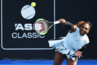 Serena Williams during the 2017 ASB Classic in Auckland. Photo/Photosport