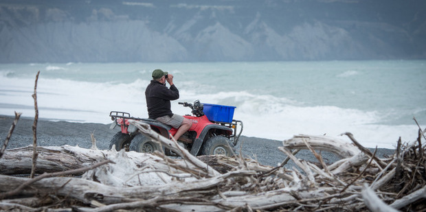 Searchers scan the shoreline after the fisherman disappeared. Photo / Wairarapa Times-Age