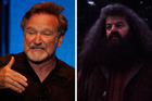 Robin Williams wanted to play Hagrid, a role eventually taken on by Robbie Coltrane.