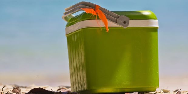 clung to a chilly bin before hauling themselves to safety. Photo / 123RF