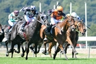 Jacksstar (orange cap) would have liked a good surface for the Auckland Cup. Photo / Supplied