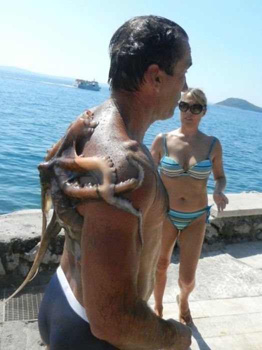 No-one wants to emerge from the ocean after a nice swim with a slithery octopus on their back. Photo / Imgur