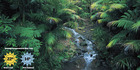 Currumbin Wildlife Sanctuary, Gold Coast. Photo / Supplied