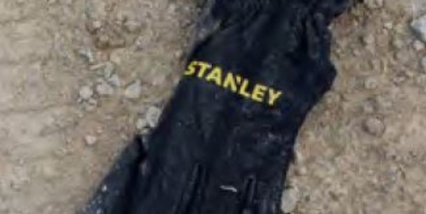 Loading Police have released a photo of a glove that may lead to the man who attacked a 23-year-old AUckland woman.