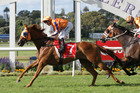 Opie Bosson on Gingernuts heads off Michael Dee on Rising Red in the $1 million Derby at Ellerslie. Photo / Trish Dunell
