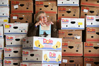 03jul14 - Bev Cowley, Zonta Book Sale Co-Ordinator for Zonta Hatea, she is amongst 200 banana boxes yet to be filled with another 800 already full, at least 1000 banana boxes in total. PICTURE/Mic