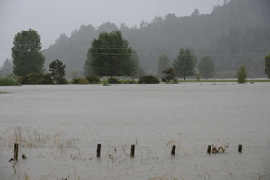Floodwaters at Whangamata nearly engulf a farmer's fence. Photo/Lesley Staniland