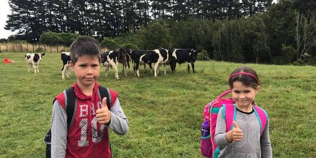 Troy and Isabelle Teki are donating their calf to help raise funds for Whanganui cancer patient Amelia Bennett.