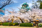 Osaka Castle during the spring cherry blossom season. Photo / Getty Images