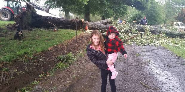 Estelle, 7, gets a day off school with her sister Ivy after a tree crashed down over their driveway in Rotoorangi, Waikato. Photo / Supplied