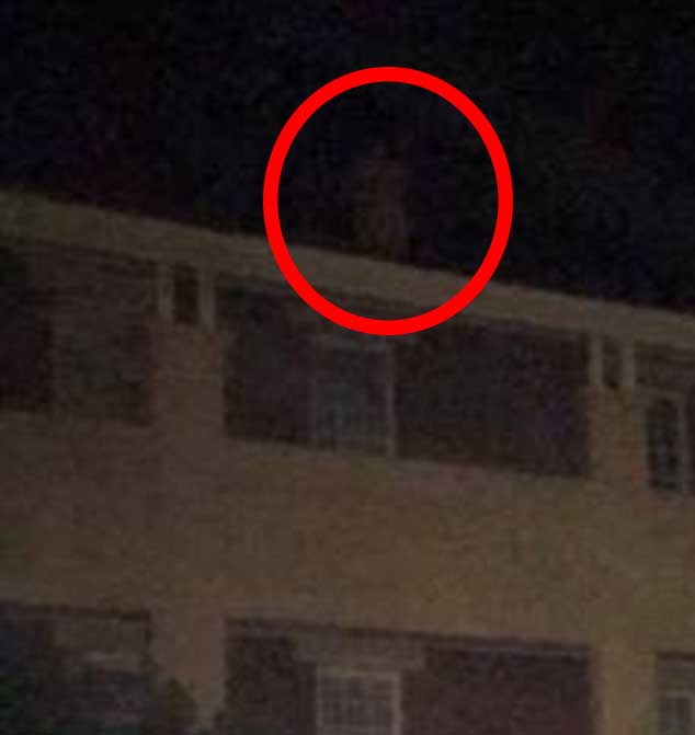 Social media users weighed in on the apparent apparition.