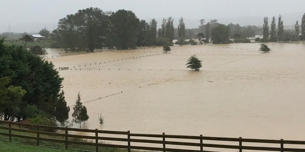 Several low-lying paddocks have been completely flooded. Photo/Jay Bath