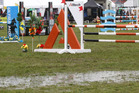 RAINY: Surface flooding in the Land Rover Premier Arena at the Horse of the Year, at Hawke's Bay Showgrounds earlier today. PHOTO/DUNCAN BROWN