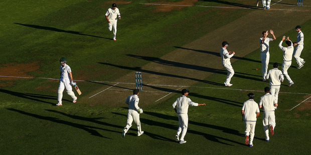 New Zealand celebrate the late wicket of South African opener Stephen Cook. Photo / Getty