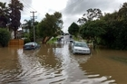 Backyards are turned into rivers in full flood as heavy rain hits hard in West Auckland