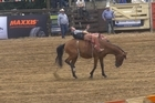 Animal Welfare group Paw Justice is calling for a ban on bareback rodeo riding saying the sport is fundamentally flawed and invariably leads to animal suffering, but NZ Rodeo Cowboys Association says the criticism is misinformed.