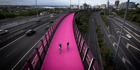 With this Pink Path Matt Heath feels like he's getting value for money. It's like it was built just for him. You can't complain about that. Photo/File