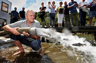 One thousand yearling rainbow trout will be released into Lake Tarawera at The Landing tomorrow.   Photo/File