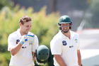 Jesse Ryder (right) and Dane Cleaver share a rewarding moment in Plunket Shield cricket. PHOTO/FILE
