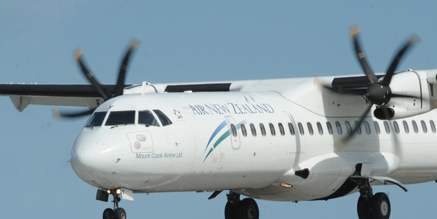 An Air New Zealand flight was forced to turn around after striking a bird this morning. Photo / file