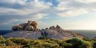 Remarkable Rocks, Kangaroo Island. Photo / Julie Fletcher