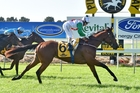 Jon Snow tackles the A$200,000 Tulloch Stakes at Rosehill on Saturday. Photo / Racing Desk