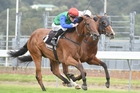 The connections of Bonneval are keen for the New Zealand Oaks winner to race in Sydney. Photo / Race Images