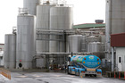 Fonterra milk tankers at their specialty powder and casein manufacturing plant at Longburn, near Palmerston North. Photo / Mark Mitchell