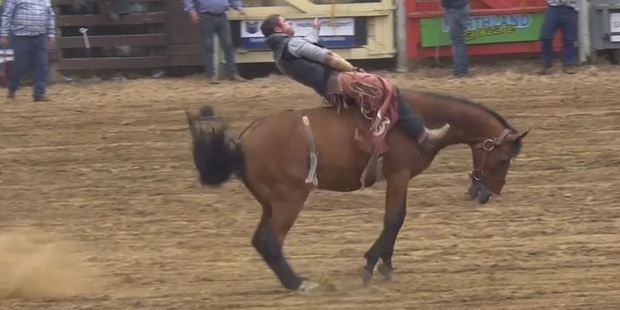 Loading Paw Justice wants a ban on rodeo. Photo / Supplied
