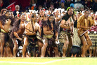 Lions v Bay of Plenty rugby match at the Rotorua International Stadium in 2005. Photo/File.