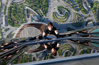 Time to send Tom Cruise scaling up the Sky Tower? Photo / Supplied