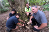 Project Rodent participants Keegan Imms and Blake Weenink (Tauraroa Area School) set rat traps in Whangarei with NRC biosecurity staff member Pete Graham and Paul Dimery.
