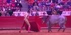 Watch: Watch: Matador gored by bull