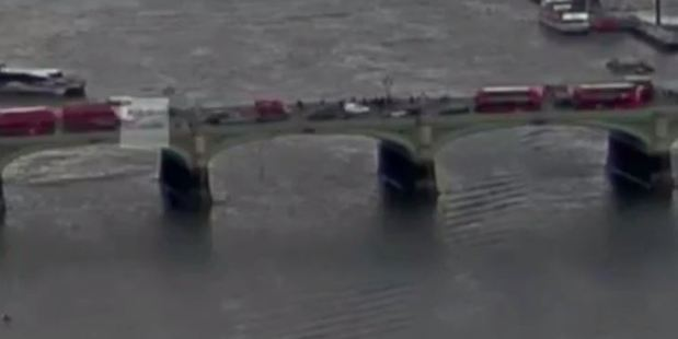Loading Footage show the person falling from Westminster Bridge. Photo / Supplied