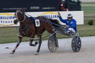 Mark Purdon drives Dream About Me to victory in the 2016 Trillion Trust Auckland Cup. Photo / Peter Meecham